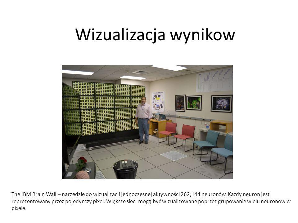 Wizualizacja wynikow The IBM Brain Wall – narzędzie do wizualizacji jednoczesnej aktywności 262,144 neuronów. Każdy neuron jest reprezentowany przez p