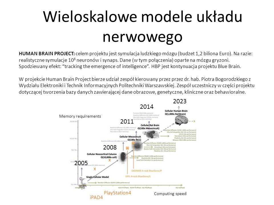 Wieloskalowe modele układu nerwowego 2005 2008 2011 2014 2023 iPAD4 PlayStation4 HUMAN BRAIN PROJECT: celem projektu jest symulacja ludzkiego mózgu (b