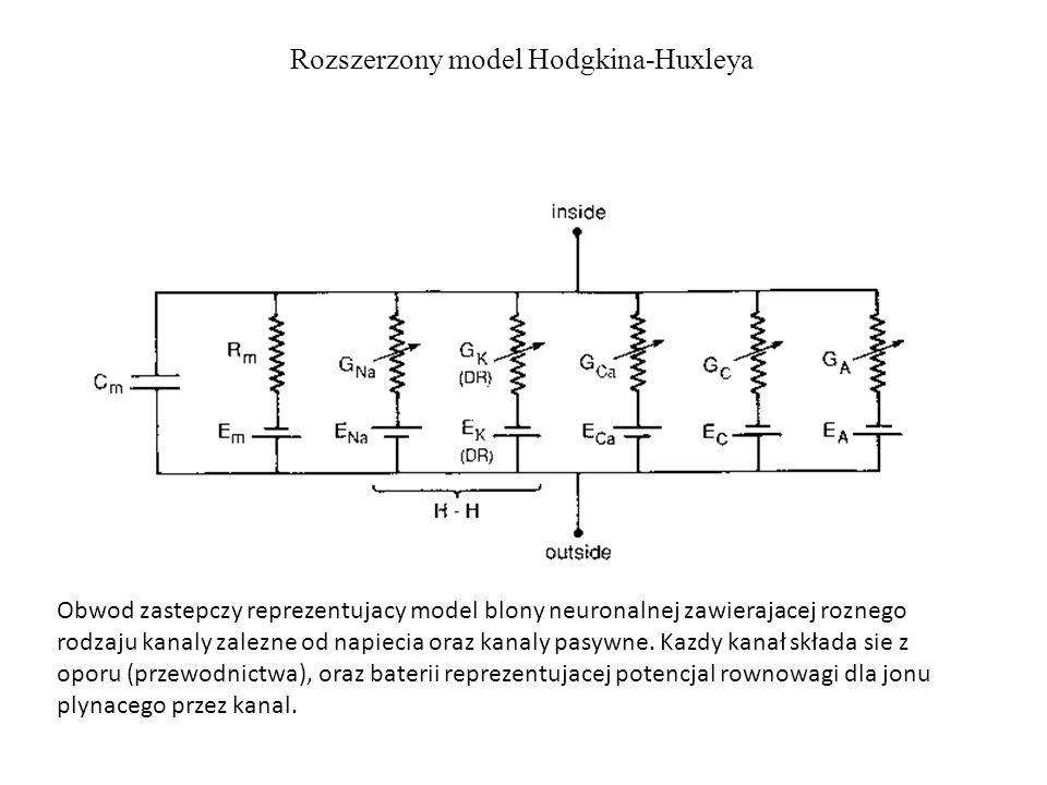 Rozszerzony model Hodgkina-Huxleya Obwod zastepczy reprezentujacy model blony neuronalnej zawierajacej roznego rodzaju kanaly zalezne od napiecia oraz