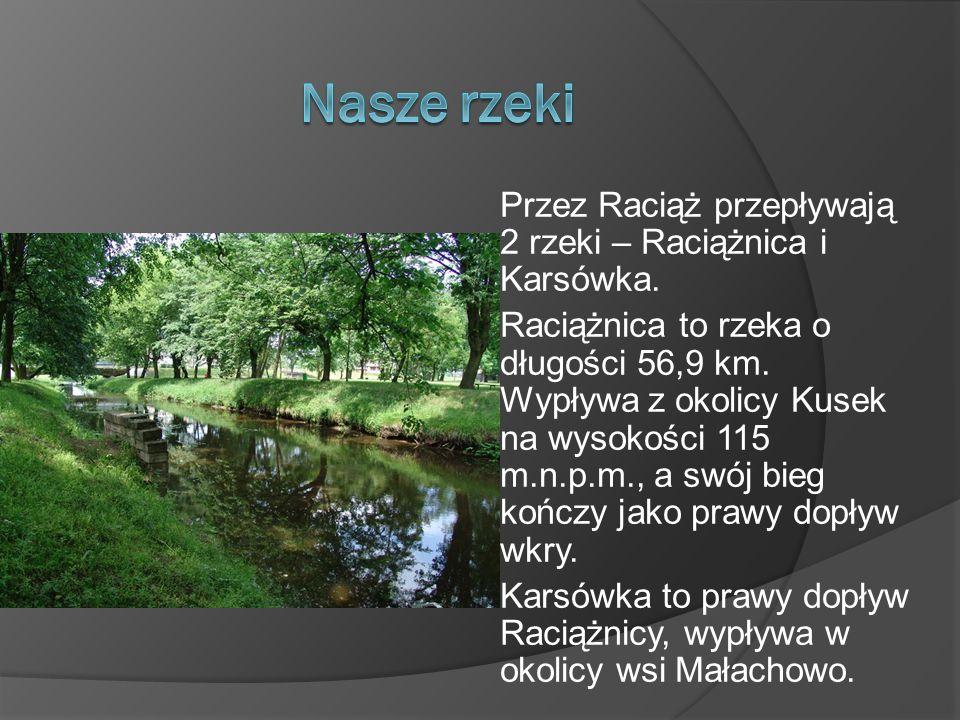 Przez Raciąż przepływają 2 rzeki – Raciążnica i Karsówka. Raciążnica to rzeka o długości 56,9 km. Wypływa z okolicy Kusek na wysokości 115 m.n.p.m., a