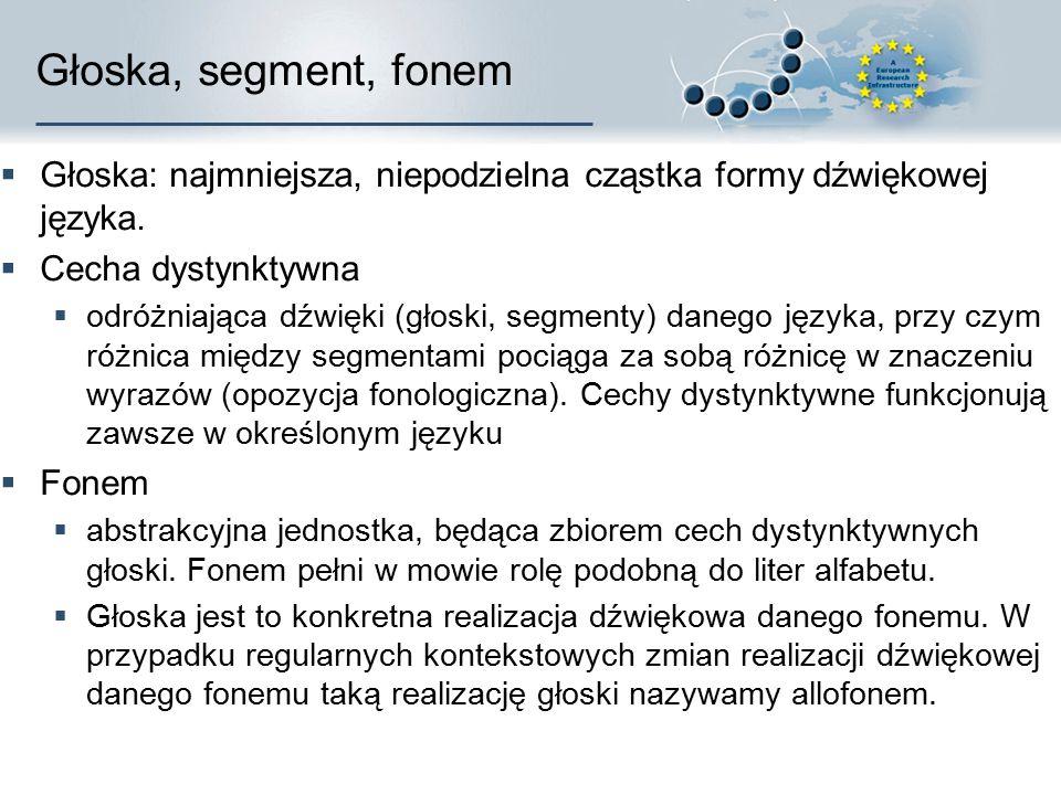 Segmentalna struktura mowy  Feature – cecha odróżniająca od innych segmentów  Segment – część o stałych cechach  Syllable – sylaba, jednostka organ