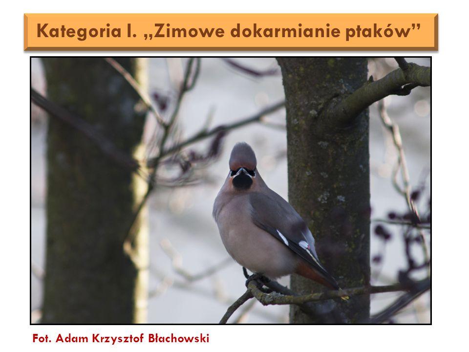 """Fot. Adam Krzysztof Błachowski Kategoria I. """"Zimowe dokarmianie ptaków"""