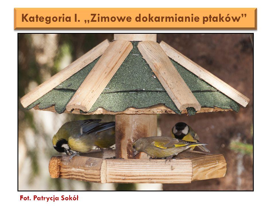 """Fot. Patrycja Sokół Kategoria I. """"Zimowe dokarmianie ptaków"""