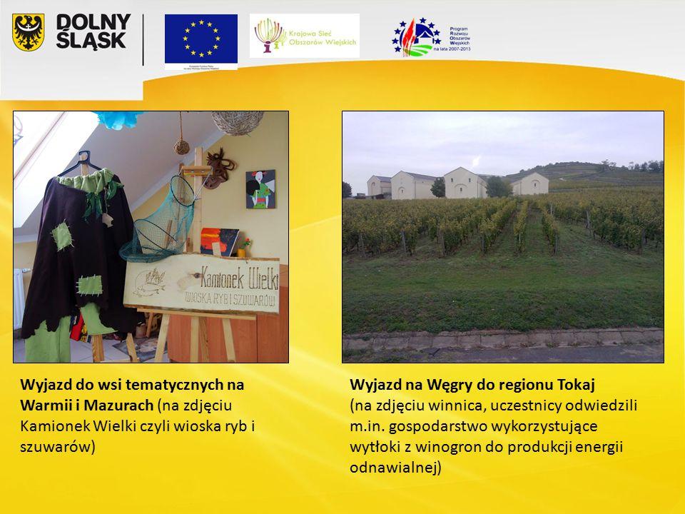 Wyjazd do wsi tematycznych na Warmii i Mazurach (na zdjęciu Kamionek Wielki czyli wioska ryb i szuwarów) Wyjazd na Węgry do regionu Tokaj (na zdjęciu winnica, uczestnicy odwiedzili m.in.