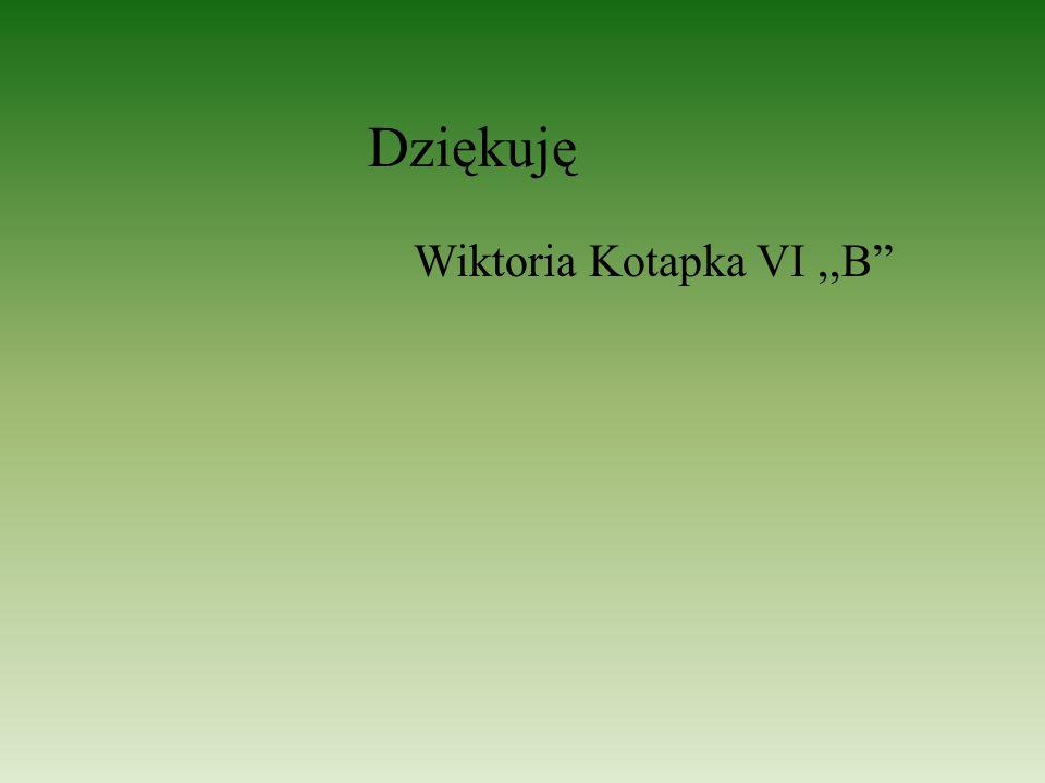 """Wiktoria Kotapka VI,,B"""" Dziękuję"""
