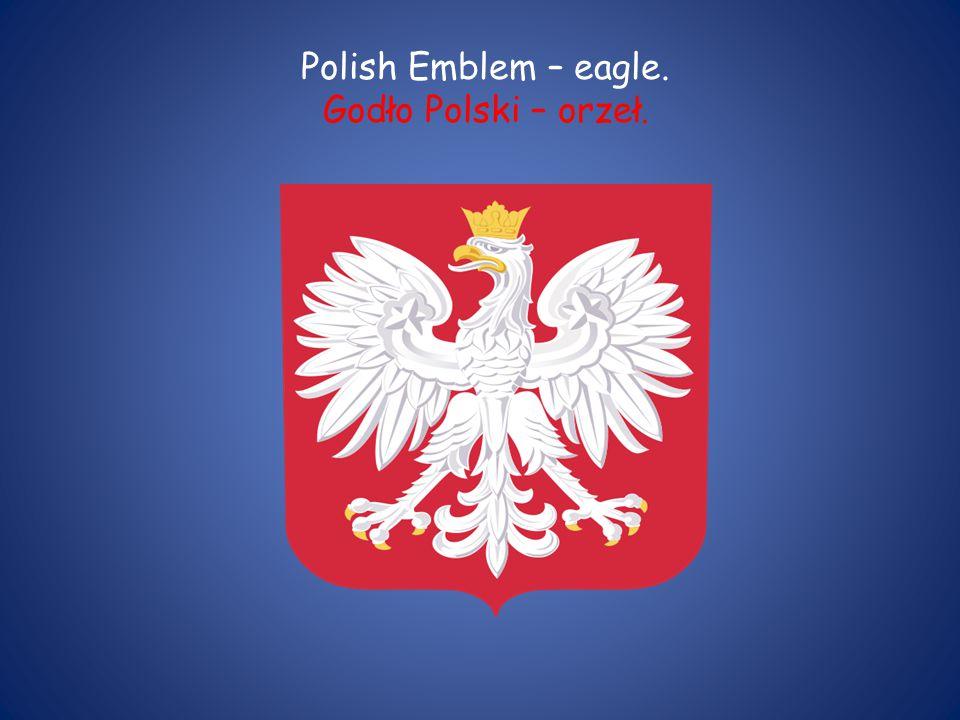 Polish Emblem – eagle. Godło Polski – orzeł.