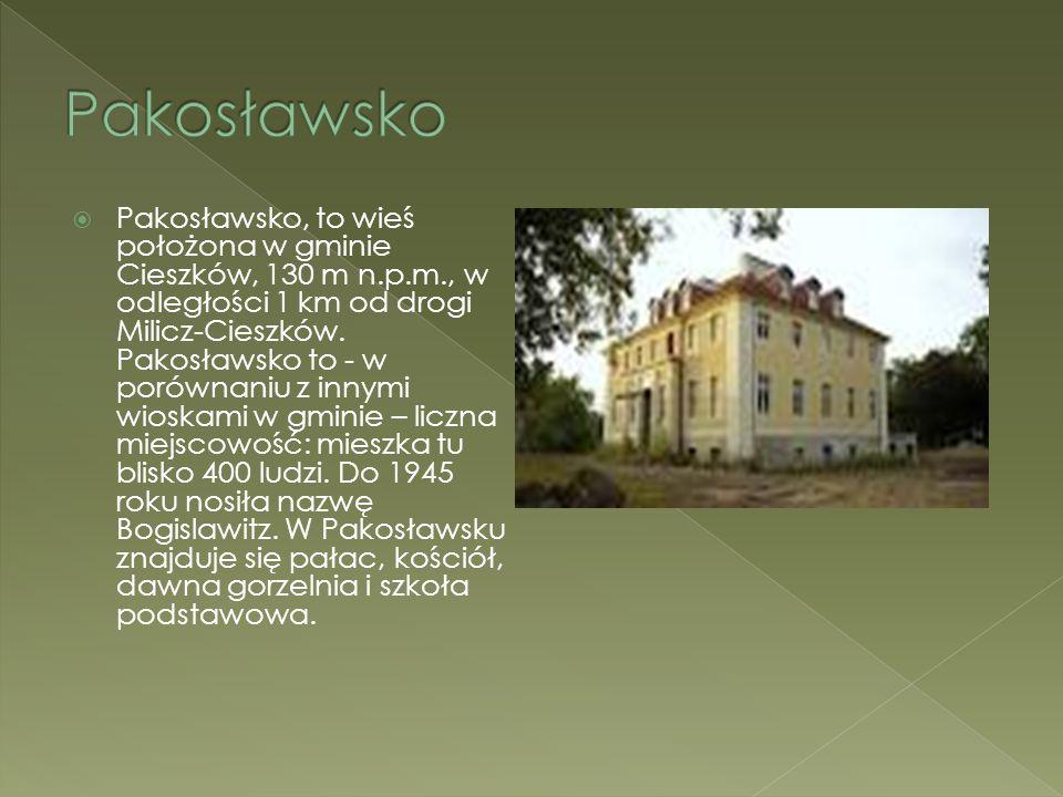 Pakosławsko, to wieś położona w gminie Cieszków, 130 m n.p.m., w odległości 1 km od drogi Milicz-Cieszków. Pakosławsko to - w porównaniu z innymi wi