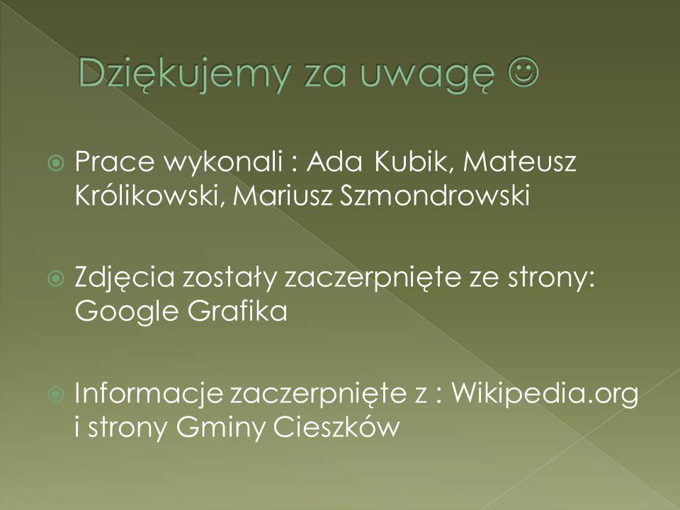  Prace wykonali : Ada Kubik, Mateusz Królikowski, Mariusz Szmondrowski  Zdjęcia zostały zaczerpnięte ze strony: Google Grafika  Informacje zaczerpn