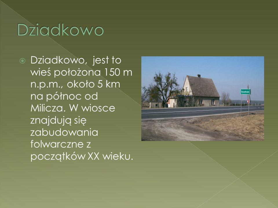  Dziadkowo, jest to wieś położona 150 m n.p.m., około 5 km na północ od Milicza. W wiosce znajdują się zabudowania folwarczne z początków XX wieku.