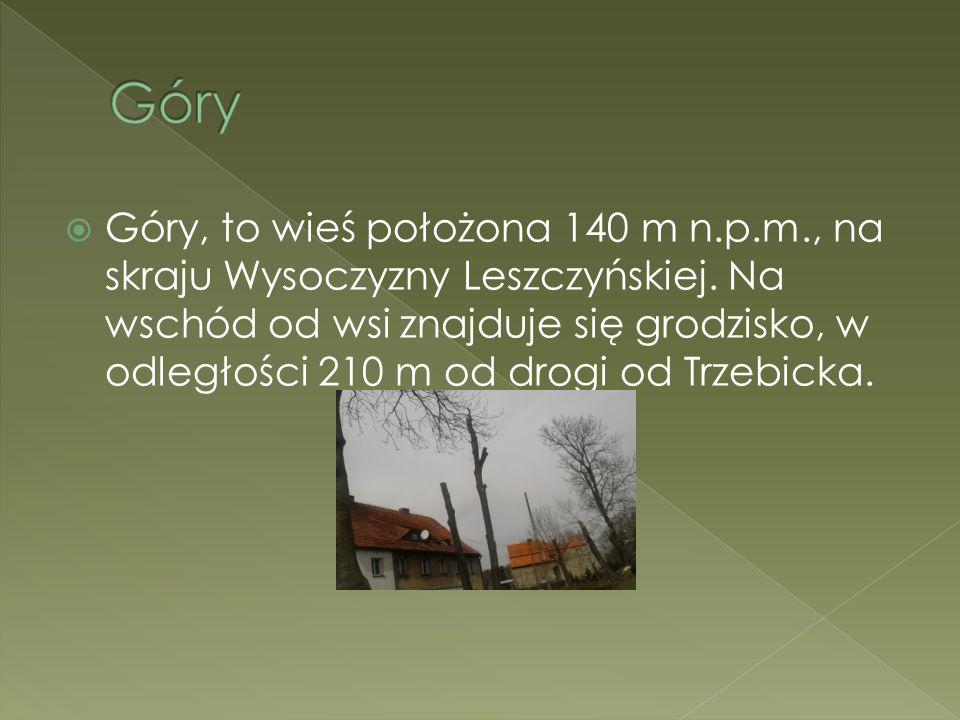  Góry, to wieś położona 140 m n.p.m., na skraju Wysoczyzny Leszczyńskiej. Na wschód od wsi znajduje się grodzisko, w odległości 210 m od drogi od Trz