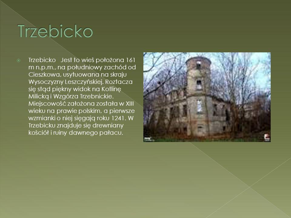  Trzebicko Jest to wieś położona 161 m n.p.m., na południowy zachód od Cieszkowa, usytuowana na skraju Wysoczyzny Leszczyńskiej. Roztacza się stąd pi