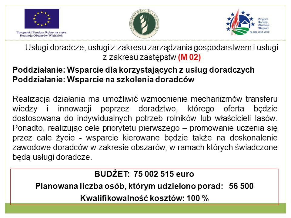 Usługi doradcze, usługi z zakresu zarządzania gospodarstwem i usługi z zakresu zastępstw (M 02) Poddziałanie: Wsparcie dla korzystających z usług dora