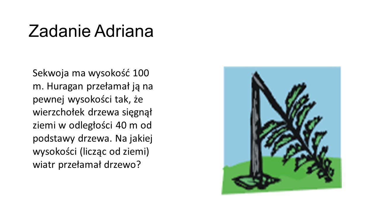 Zadanie Adriana Sekwoja ma wysokość 100 m.