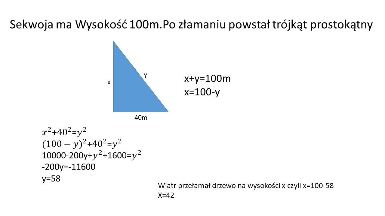 Sekwoja ma Wysokość 100m.Po złamaniu powstał trójkąt prostokątny Y x 40m x+y=100m x=100-y Wiatr przełamał drzewo na wysokości x czyli x=100-58 X=42