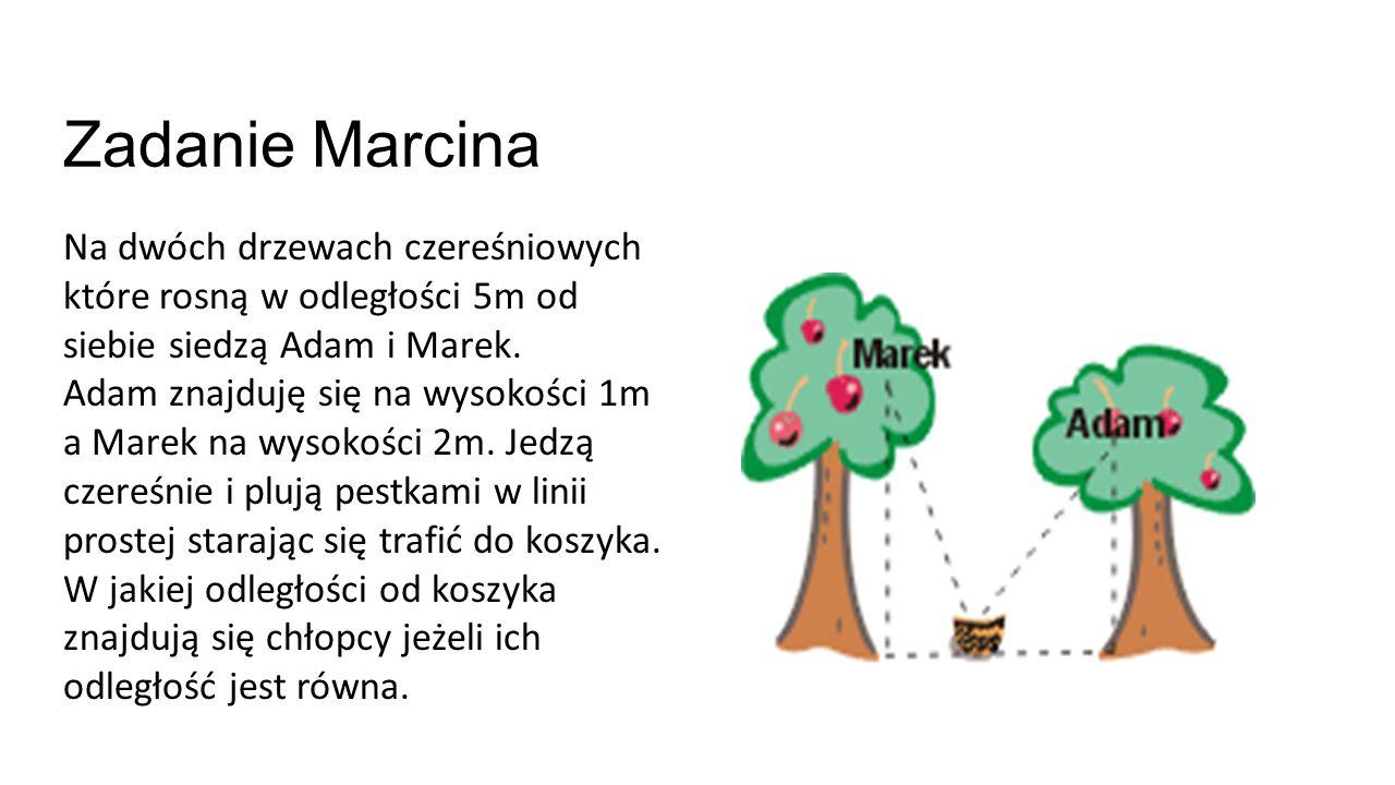 Zadanie Marcina Na dwóch drzewach czereśniowych które rosną w odległości 5m od siebie siedzą Adam i Marek.