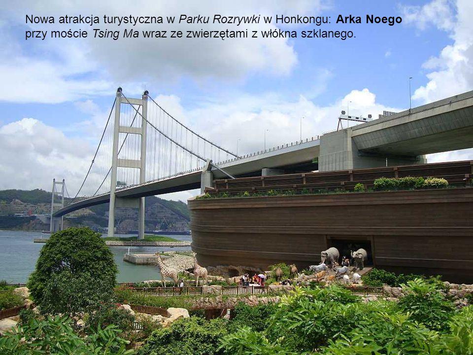 Lokalizacja Arki Noego w Parku Rozrywki.