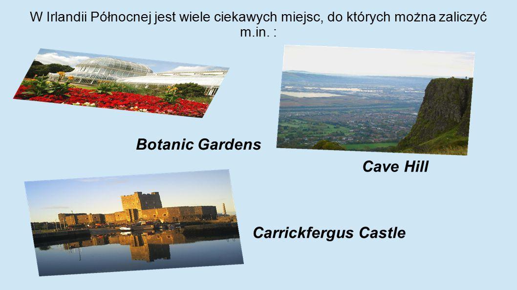 W Irlandii Północnej jest wiele ciekawych miejsc, do których można zaliczyć m.in. : Botanic Gardens Cave Hill Carrickfergus Castle