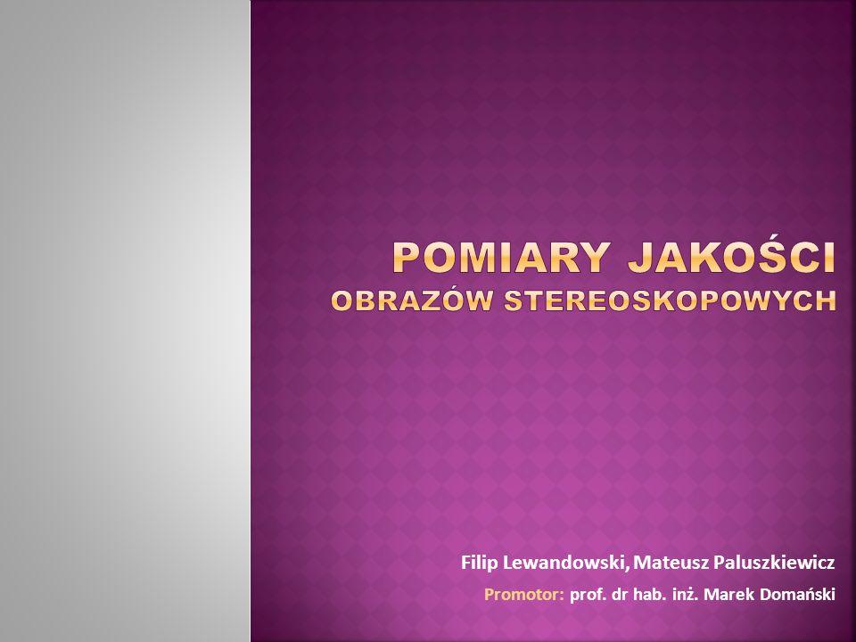 Filip Lewandowski, Mateusz Paluszkiewicz Promotor: prof. dr hab. inż. Marek Domański
