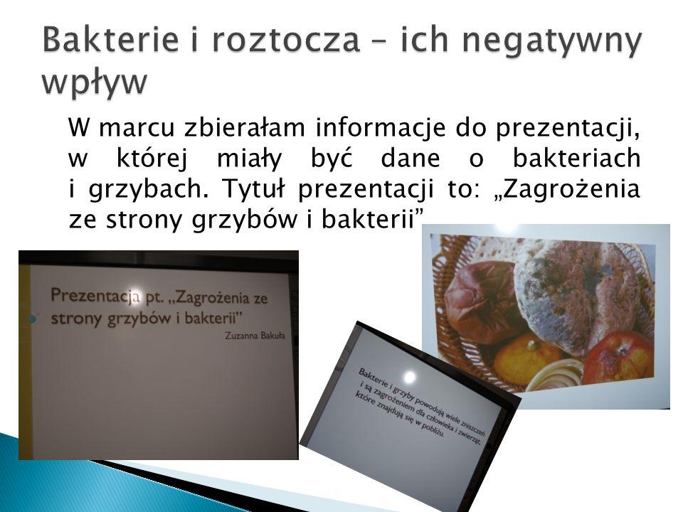 """W marcu zbierałam informacje do prezentacji, w której miały być dane o bakteriach i grzybach. Tytuł prezentacji to: """"Zagrożenia ze strony grzybów i ba"""