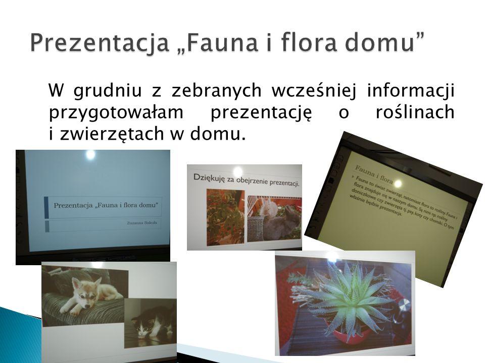 W grudniu z zebranych wcześniej informacji przygotowałam prezentację o roślinach i zwierzętach w domu.
