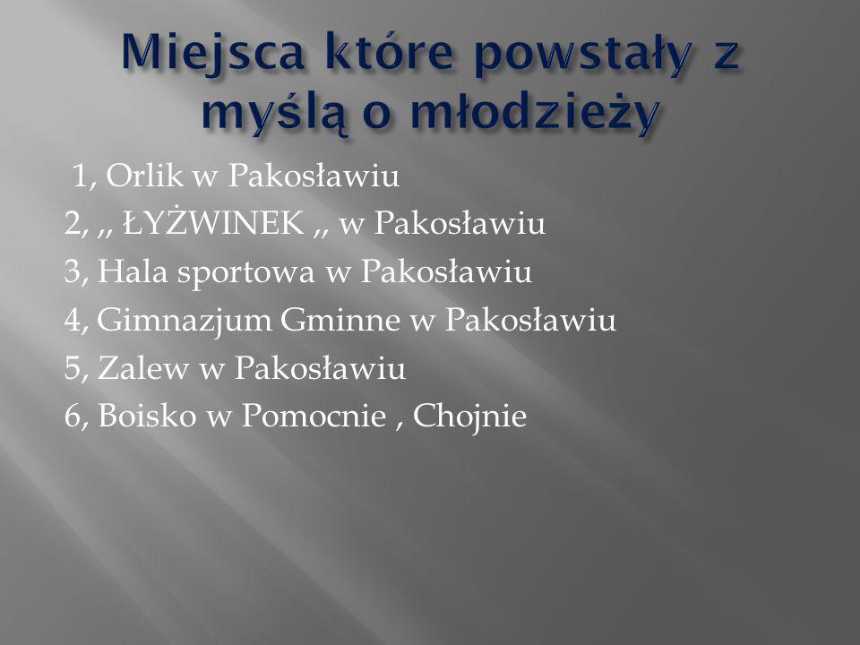  Razem z wypracowanymi wnioskami udałyśmy się do wójta gminy Pakosław w celu przedstawienia problemów mieszkańców.