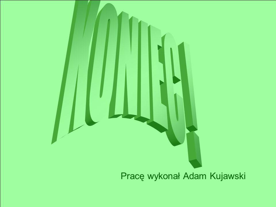 Pracę wykonał Adam Kujawski