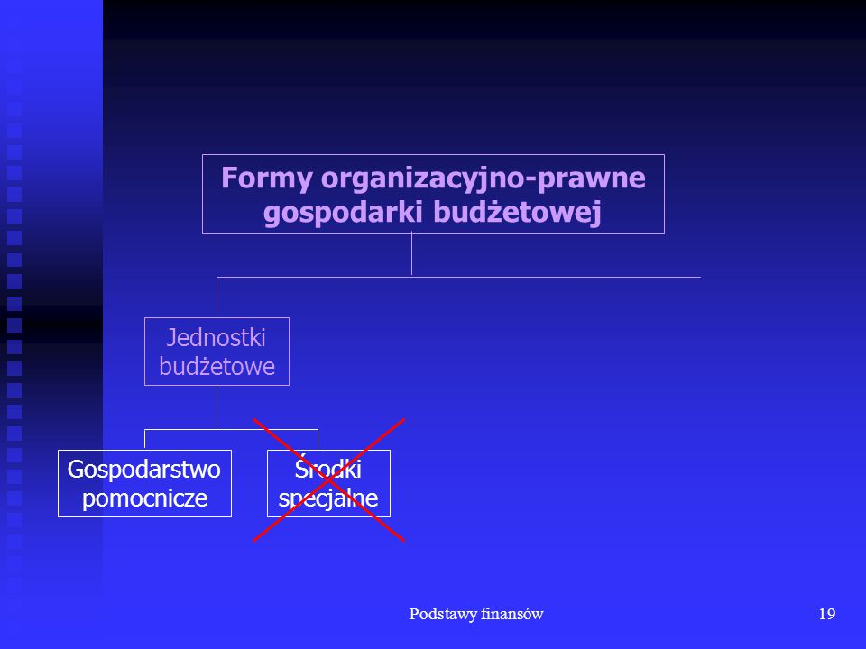Podstawy finansów19 Gospodarstwo pomocnicze Środki specjalne Formy organizacyjno-prawne gospodarki budżetowej Jednostki budżetowe