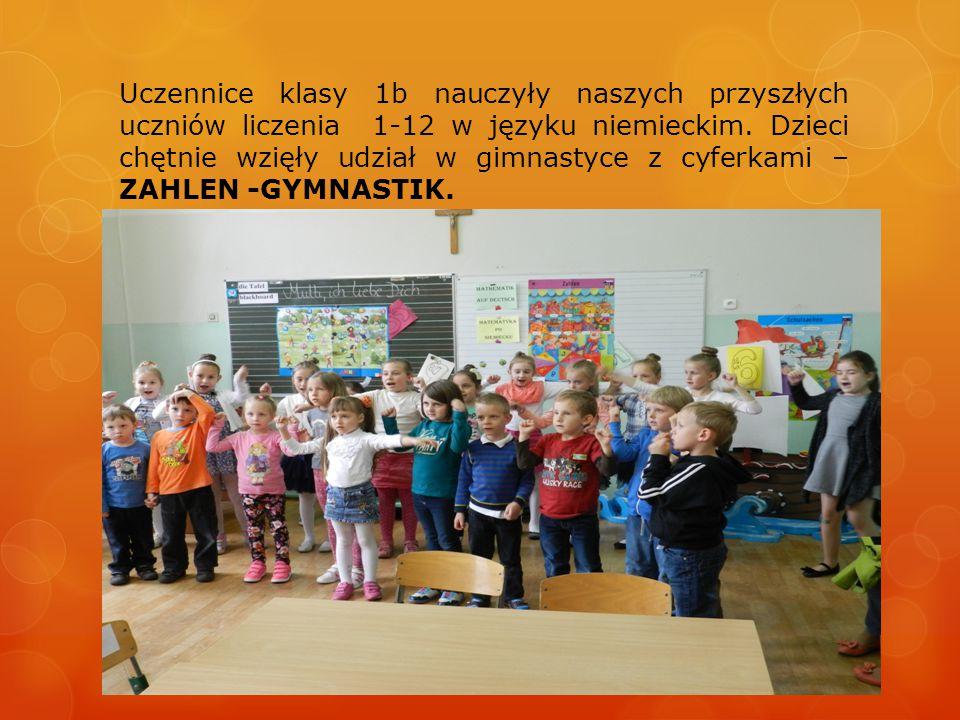 Na zakończenie zaśpiewaliśmy wspólnie rap cyferkowy Zahlen- Rap i zrobiliśmy pamiątkowe zdjęcie.