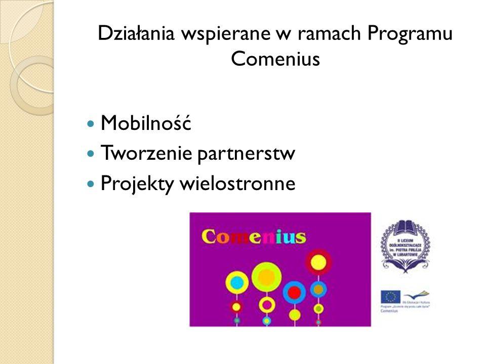 Działania wspierane w ramach Programu Comenius Mobilność Tworzenie partnerstw Projekty wielostronne