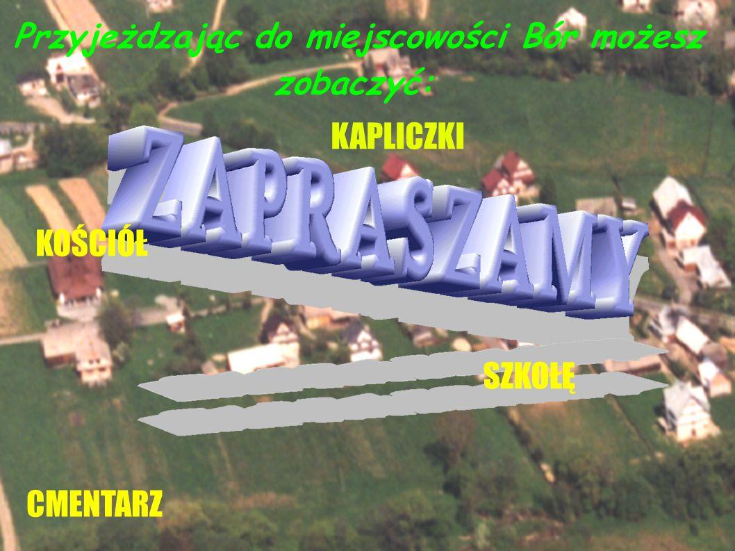 Bór jest to niewielka miiejscowość leżąca pomiędzy Gorcami a Tatrami, około 10 km od Nowego Targu i 20 km od Zakopanego