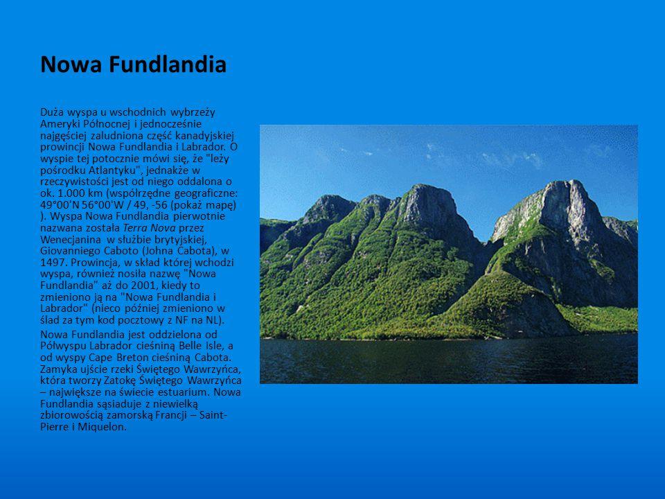 Nowa Fundlandia Duża wyspa u wschodnich wybrzeży Ameryki Północnej i jednocześnie najgęściej zaludniona część kanadyjskiej prowincji Nowa Fundlandia i
