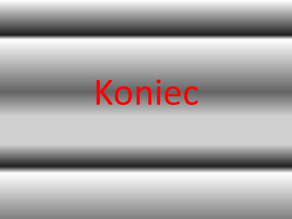 Używano Mincrosoft PowerPoint