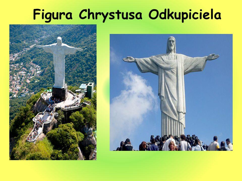 Brazylia słynie z karnawału w Rio de Janeiro.