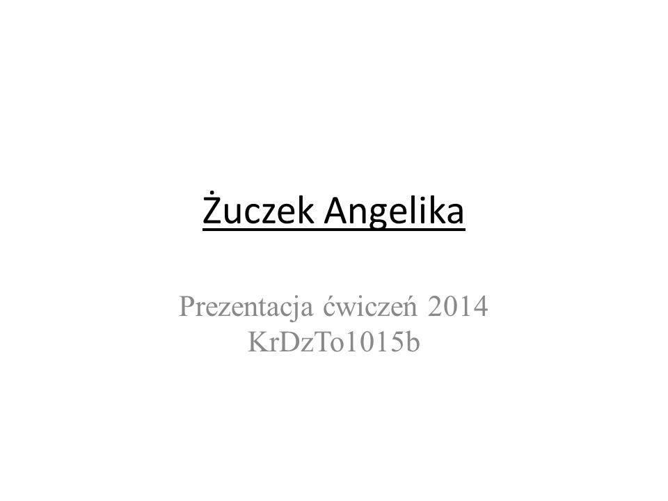 Żuczek Angelika Prezentacja ćwiczeń 2014 KrDzTo1015b