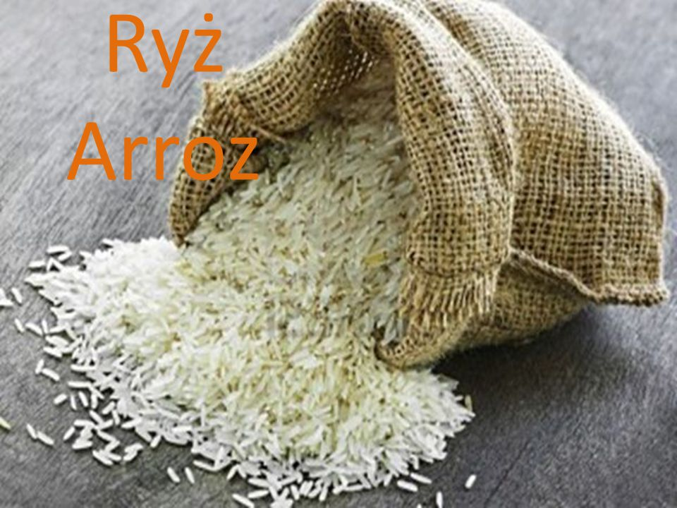Ryż Arroz
