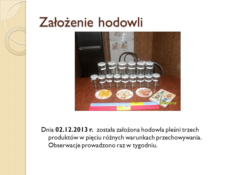 Założenie hodowli Dnia 02.12.2013 r. została założona hodowla pleśni trzech produktów w pięciu różnych warunkach przechowywania. Obserwacje prowadzono