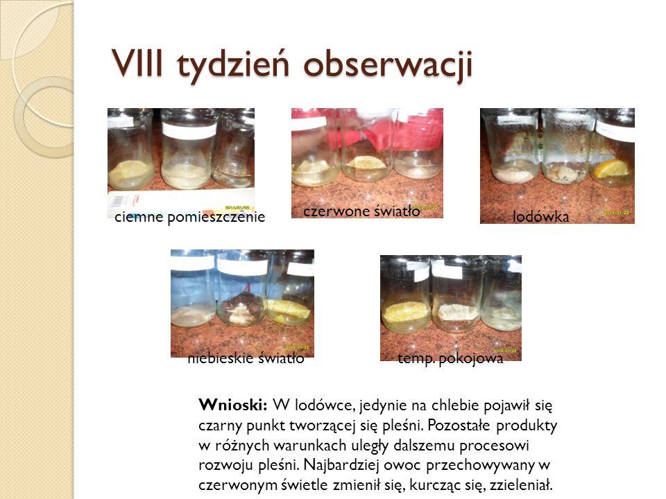 VIII tydzień obserwacji Wnioski: W lodówce, jedynie na chlebie pojawił się czarny punkt tworzącej się pleśni. Pozostałe produkty w różnych warunkach u