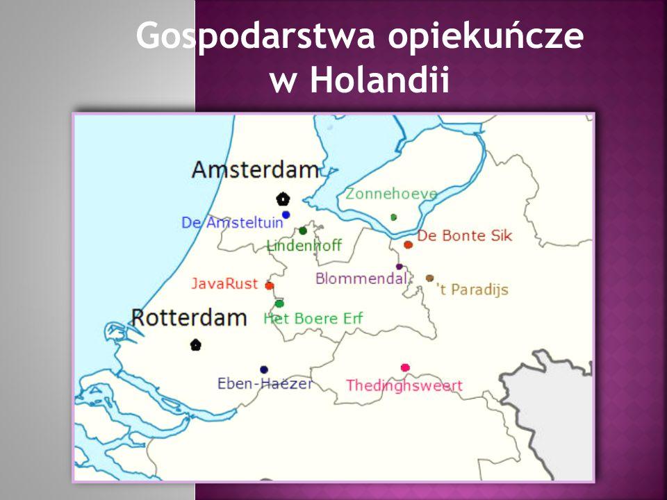 Gospodarstwa opiekuńcze w Holandii