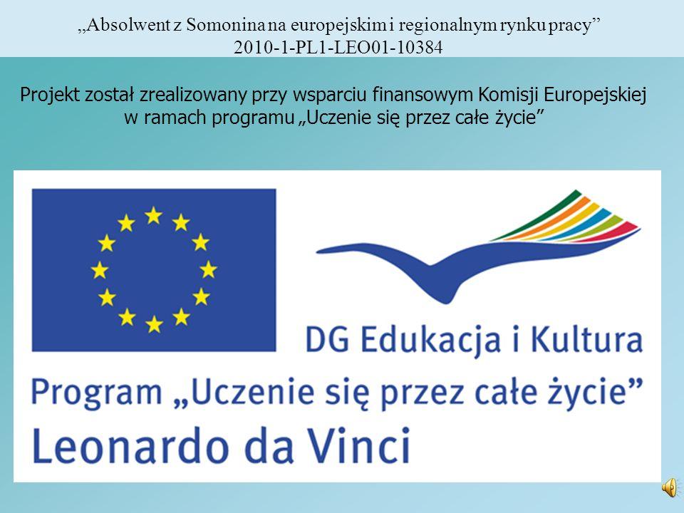 Absolwent z Somonina na europejskim i regionalnym rynku pracy 2010-1-PL1-LEO01-10384 Projekt został zrealizowany przy wsparciu finansowym Komisji Euro