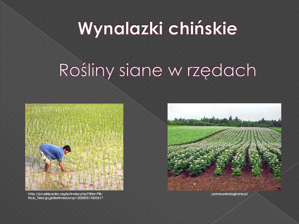 Justyna Kaszura Wynalazki chińskie KONIEC Niniejsza prezentacja jest częścią książki: D.