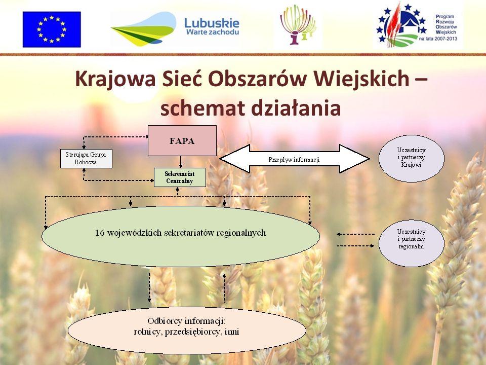 Krajowa Sieć Obszarów Wiejskich – schemat działania FAPA