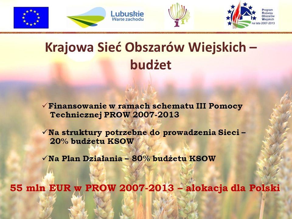 Krajowa Sieć Obszarów Wiejskich – budżet Finansowanie w ramach schematu III Pomocy Technicznej PROW 2007-2013 Na struktury potrzebne do prowadzenia Sieci – 20% budżetu KSOW Na Plan Działania – 80% budżetu KSOW 55 mln EUR w PROW 2007-2013 – alokacja dla Polski