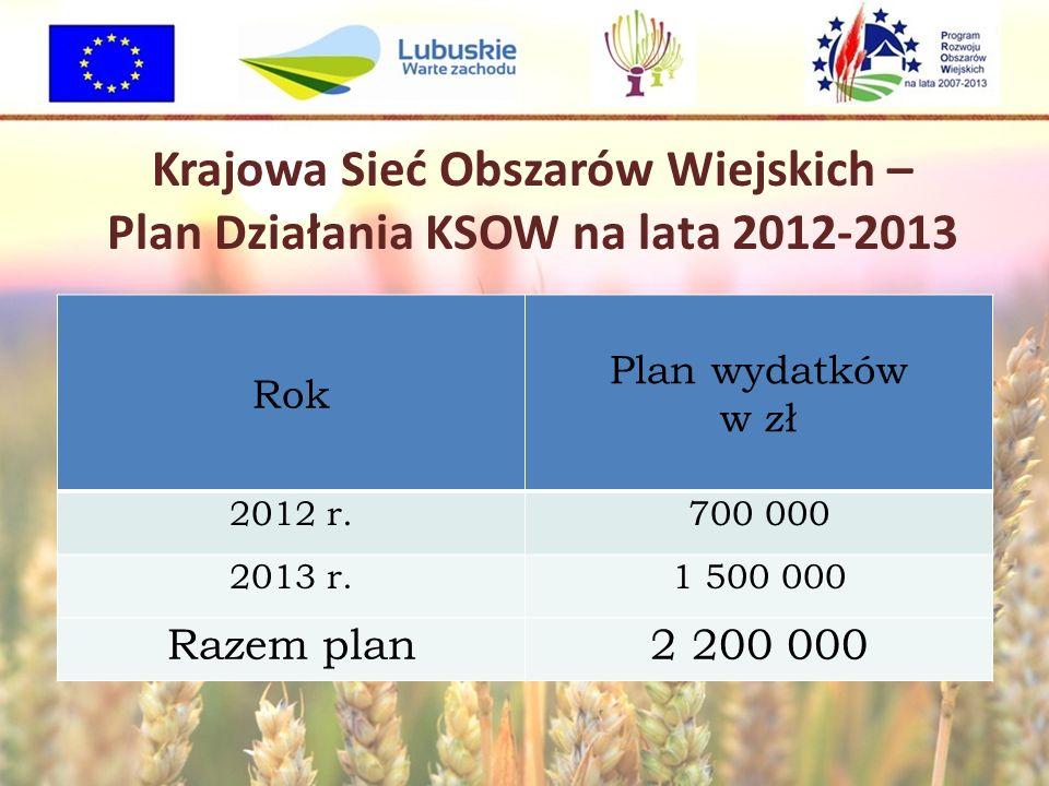 Krajowa Sieć Obszarów Wiejskich – Plan Działania KSOW na lata 2012-2013 Rok Plan wydatków w zł 2012 r.700 000 2013 r.1 500 000 Razem plan2 200 000