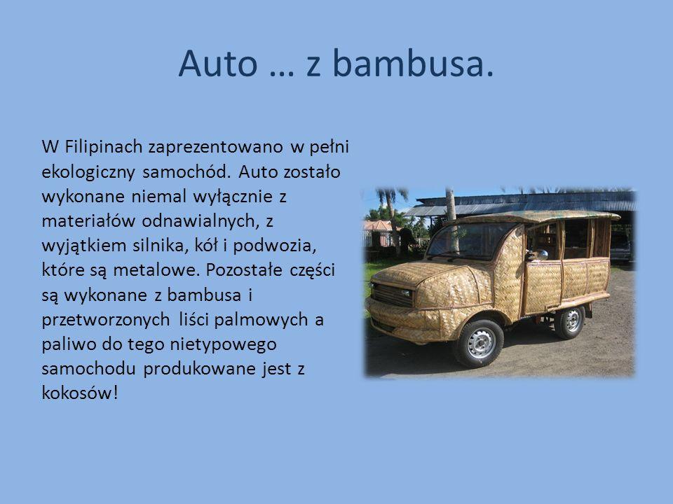 Auto … z bambusa. W Filipinach zaprezentowano w pełni ekologiczny samochód. Auto zostało wykonane niemal wyłącznie z materiałów odnawialnych, z wyjątk