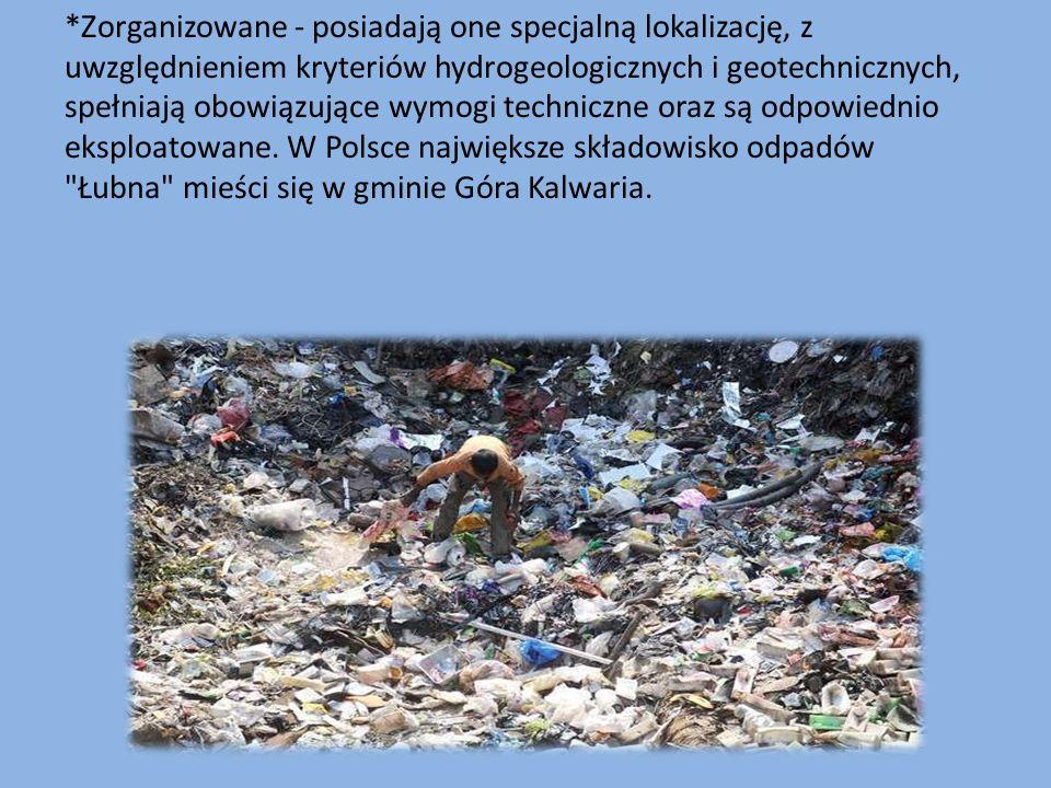 Są to nielegalne wysypiska, które nie podlegają kontroli Sanepidu.