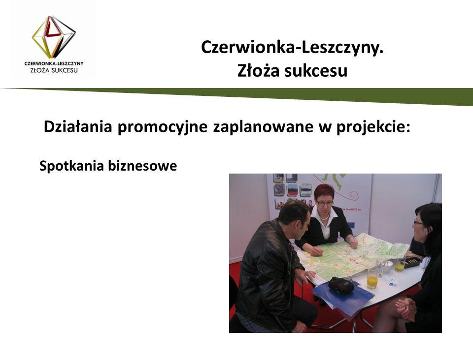 Działania promocyjne zaplanowane w projekcie: Spotkania biznesowe Czerwionka-Leszczyny. Złoża sukcesu