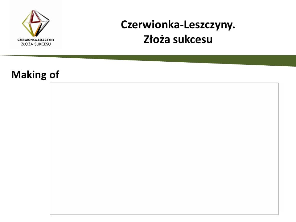 Działania promocyjne zaplanowane w projekcie: Spotkania biznesowe Czerwionka-Leszczyny.