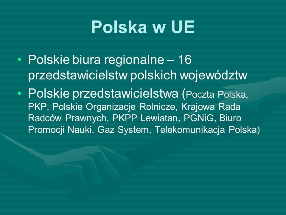Polska w UE Polskie biura regionalne – 16 przedstawicielstw polskich województw Polskie przedstawicielstwa ( Poczta Polska, PKP, Polskie Organizacje R