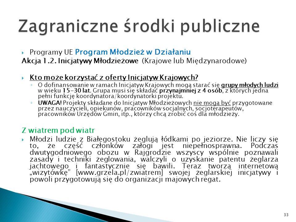 Programy UE Program Młodzież w Działaniu Akcja 1.2. Inicjatywy Młodzieżowe (Krajowe lub Międzynarodowe) Kto może korzystać z oferty Inicjatyw Krajowyc