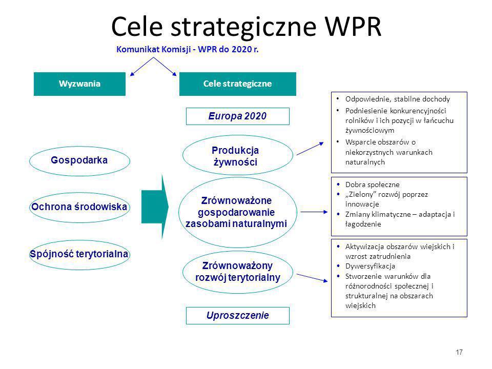 17 Cele strategiczne WPR Wyzwania Europa 2020 Cele strategiczne Uproszczenie Gospodarka Zrównoważony rozwój terytorialny Produkcja żywności Komunikat